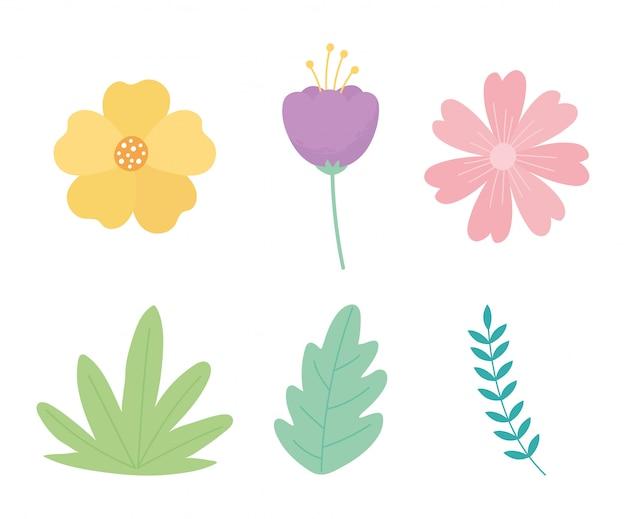 Flores rama hojas follaje naturaleza decoración conjunto de iconos