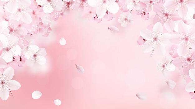 Flores rosa claro florecientes de sakura.