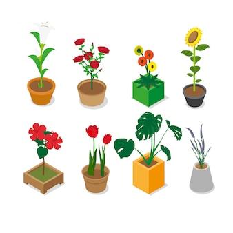 Flores surtidas isométricas
