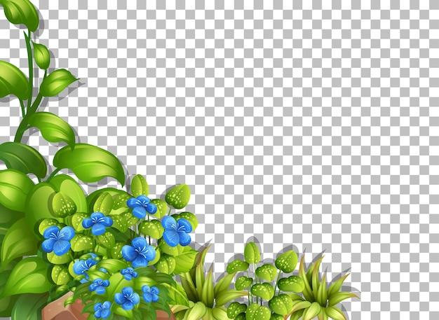 Flores tropicales y hojas sobre fondo transparente