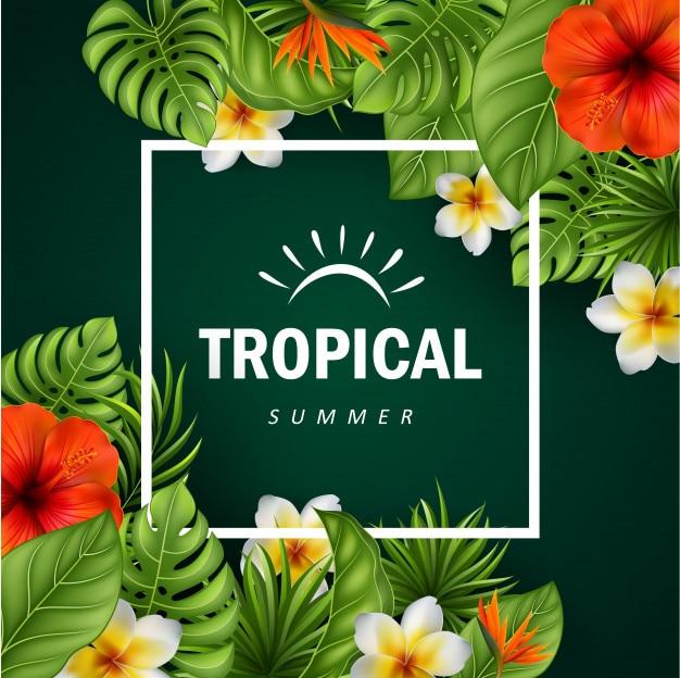 Flores tropicales y hojas