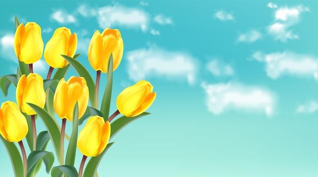 Flores de tulipán amarillo sobre fondo de cielo