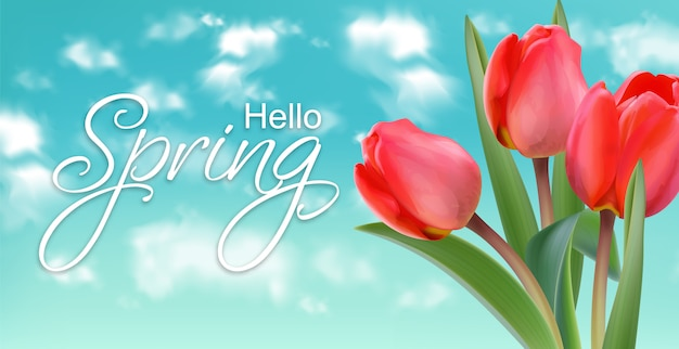 Flores de tulipán de primavera sobre fondo de cielo
