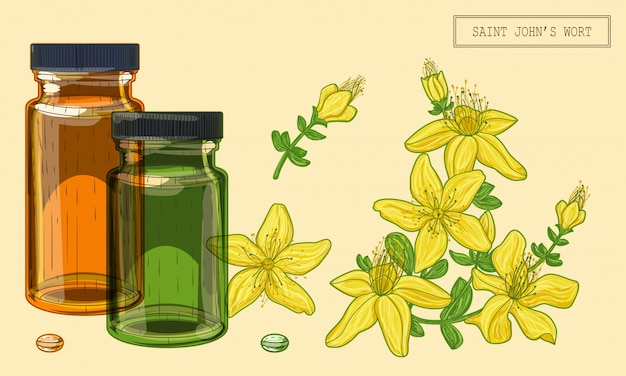 Flores y viales de hierba de san juan