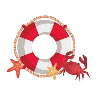 Flotador marino con cangrejo y estrella de mar.