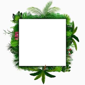 Follaje de bosque tropical detrás de pancarta blanca