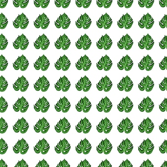 El follaje geométrico de la pequeña monstera imprime un patrón sin costuras en estilo dibujado a mano.