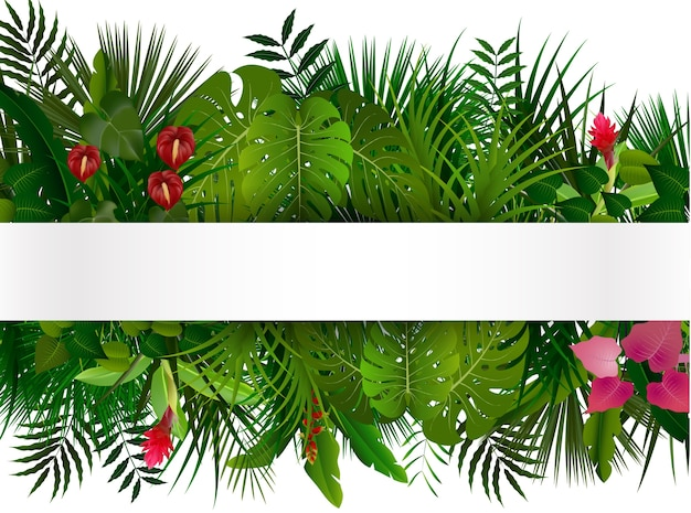 Follaje tropical con banner horizontal isolater