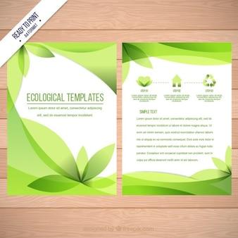Folleto ecológico de hojas