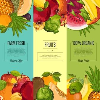 Folleto vertical de fruta fresca de granja o conjunto de banner