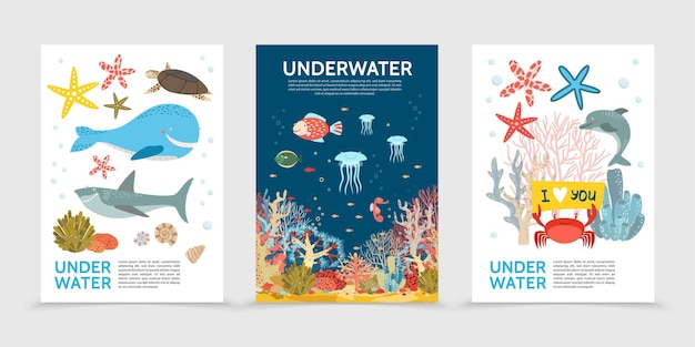 Folletos planos coloridos de la vida submarina con peces ballena tortuga tiburón medusa caballo de mar cangrejo estrella de mar