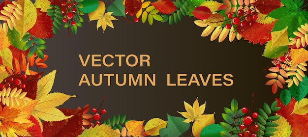 Fondo abstracto de la ilustración del vector con las hojas de otoño que caen. eps10. fondo horizontal