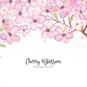 Fondo de acuarela flor de cerezo