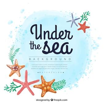Fondo de acuarela de verano con estrellas de mar