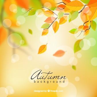Fondo adorable de otoño con diseño realista