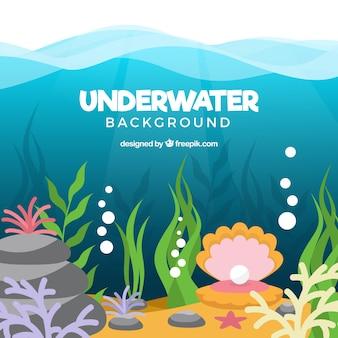 Fondo bajo el agua con diferentes especies marinas