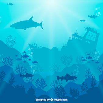 Fondo bajo el agua con especies marinas diferentes