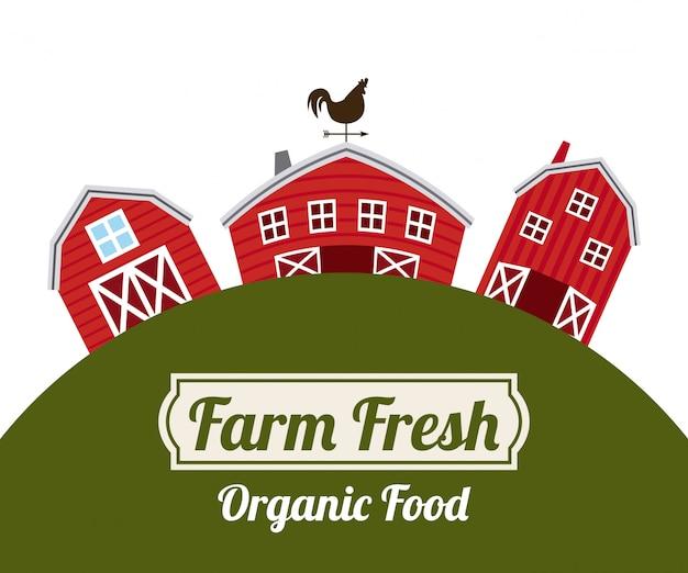 Fondo de alimentos orgánicos frescos de granja