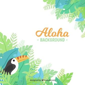 Fondo aloha tropical
