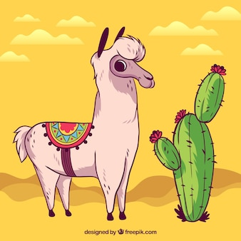 Fondo de alpaca en desierto