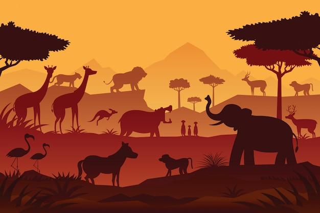 Fondo de amanecer y atardecer de animales y vida silvestre, silueta, naturaleza, zoológico y safari