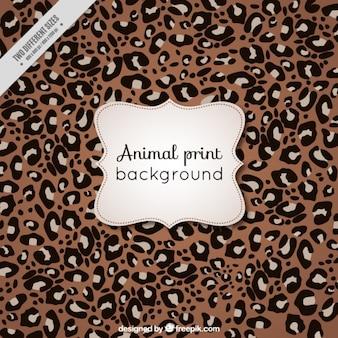Fondo de animal de leopardo