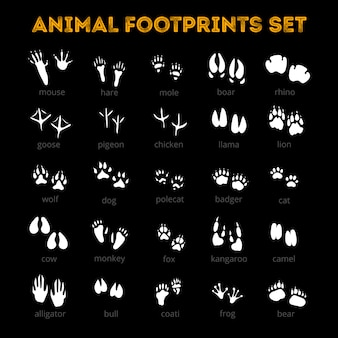Fondo animal track negro