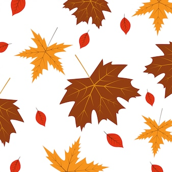 Un fondo artístico abstracto del tema del otoño. hojas de otoño sobre papel blanco.