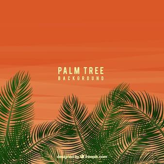 Fondo de atardecer con hojas de palmeras