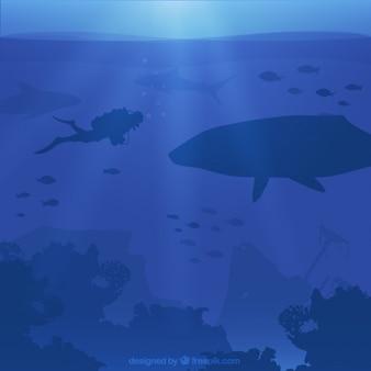 Fondo azul de buceo