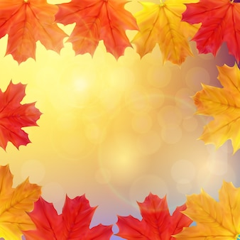 Fondo de banner de hojas de otoño brillante. ilustración