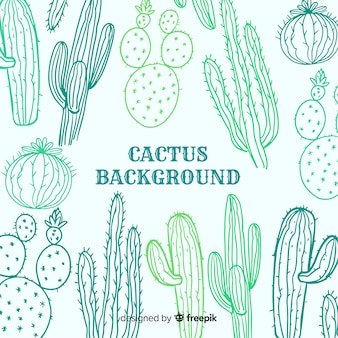Fondo bocetos cactus