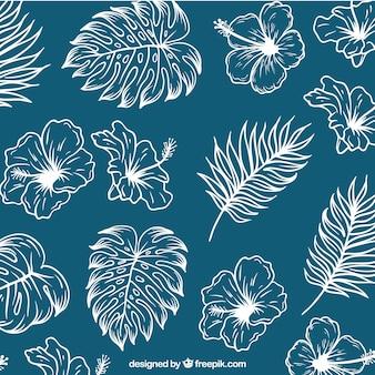 Fondo de bocetos de hojas de palmeras y flores