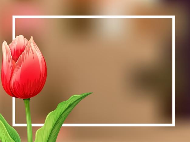 Fondo de borde con flor de tulipán