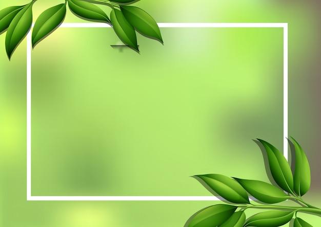 Fondo de borde con hojas verdes