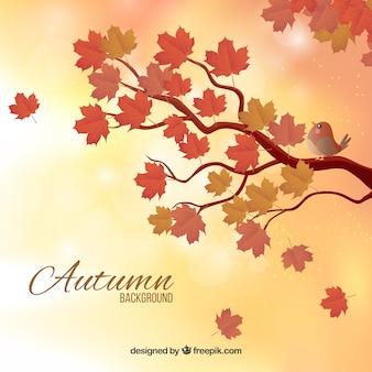 Fondo borroso de otoño con ramas
