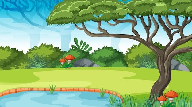 Fondo de bosque al aire libre de la naturaleza