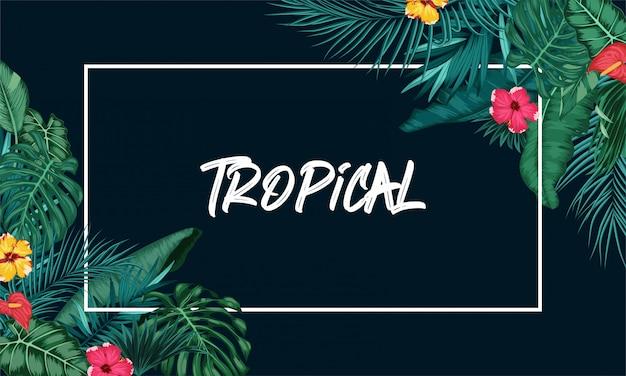 Fondo de bosque tropical con papel redondo.