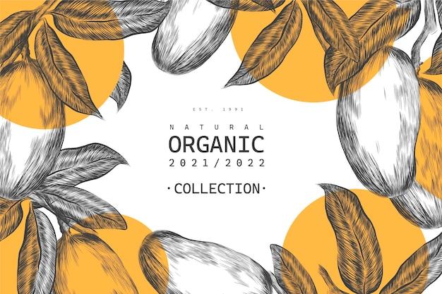 Fondo botánico de la ilustración del árbol de mango