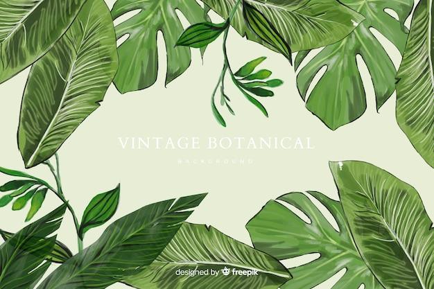 Fondo botánico
