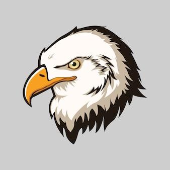 Fondo con cabeza de águila aislada