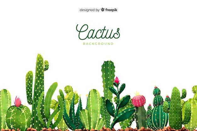 Fondo cactus acuarela