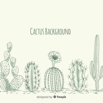 Fondo cactus sin color dibujado a mano