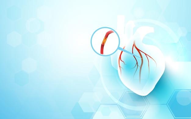 Fondo cardiológico del corazón
