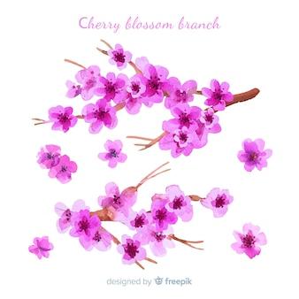 Fondo cerezo florecido dibujado a mano