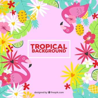 Fondo colorido de hojas tropicales