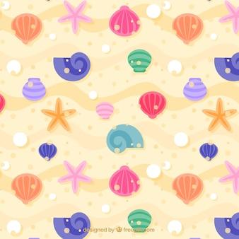 Fondo de conchas marinas de colores