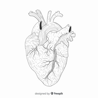 Fondo de corazón dibujado a mano