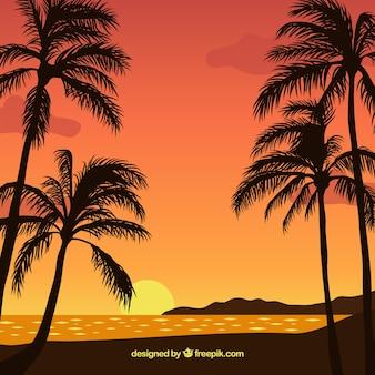 Fondo de puesta de sol con palmeras de diseño plano