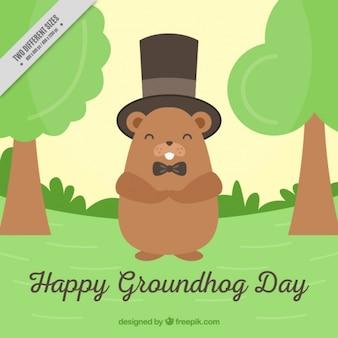 Fondo del día de la marmota con sombrero de copa